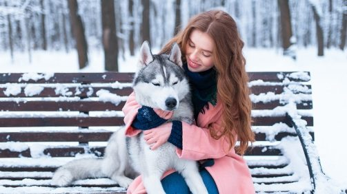 woman-sitting-on-the-bench-with-siberian-husky-PS9ZX58