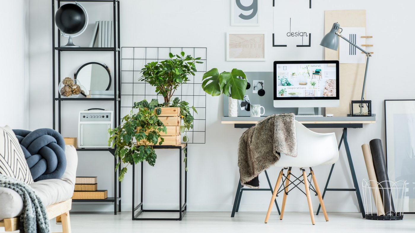 simple-home-office-with-tree-PBXRXYB-large