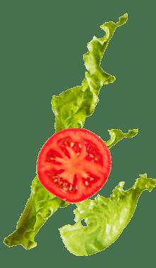 lettuce_tomato@2x