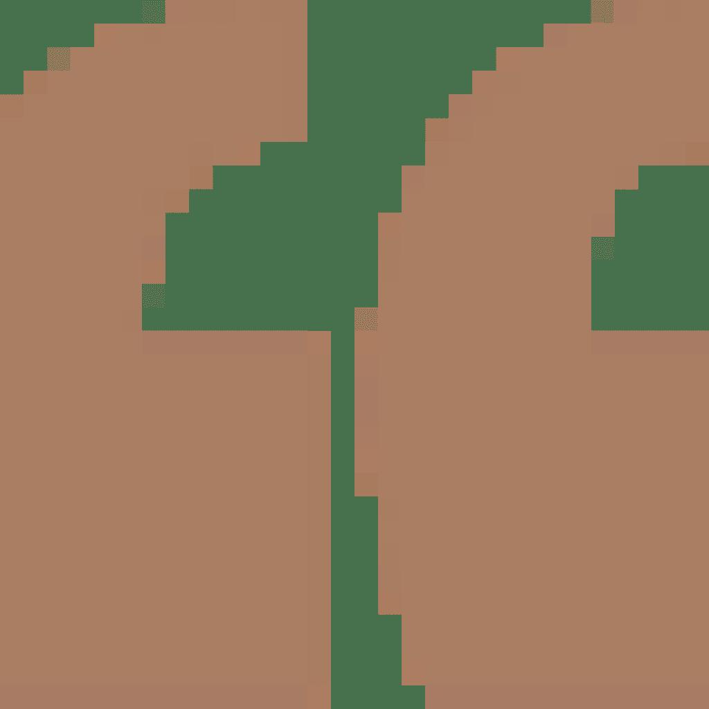 Path 2535
