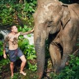 traveler-with-elephant-PYYEKQD
