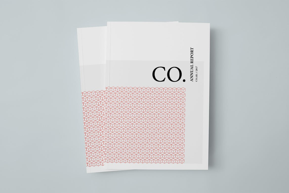 CO.-Annual-Report