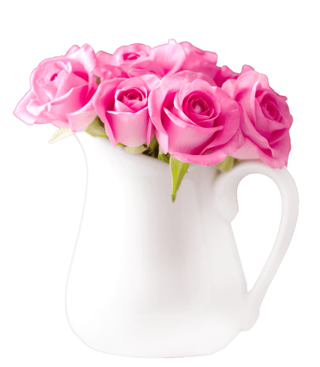beautiful-pink-roses-bouquet-in-vase-PBDGSKJ