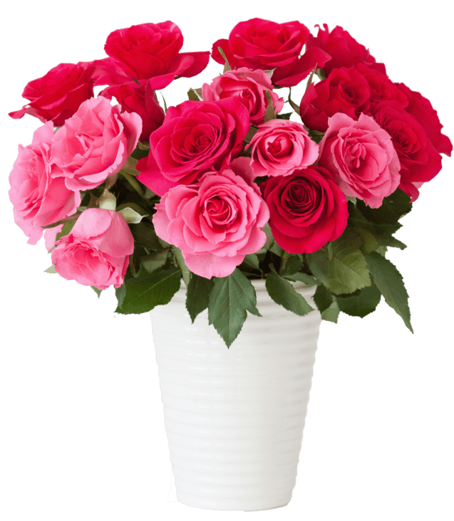 beautiful-red-rose-flowers-bouquet-in-vase-over-PQMN932