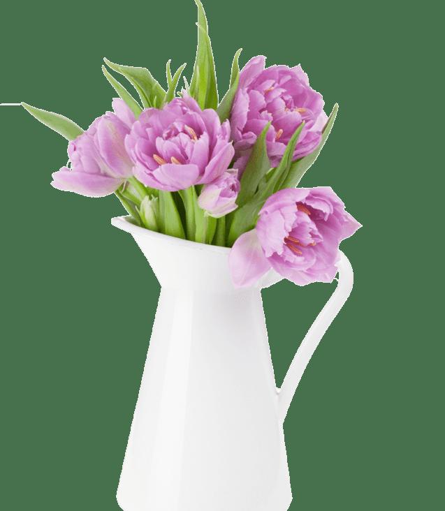 pink-tulips-bouquet-D5TCQEK(1)