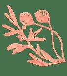 flower title 2